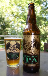 Stone Brewing Ruintation IPA